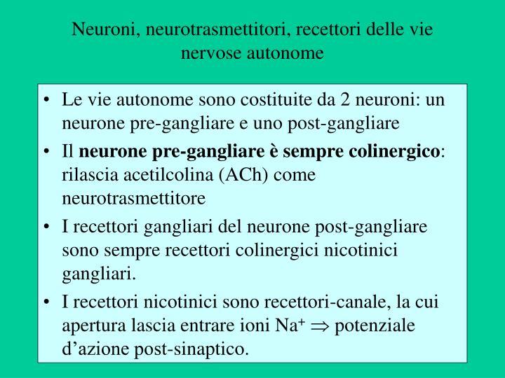 Neuroni, neurotrasmettitori, recettori delle vie nervose autonome
