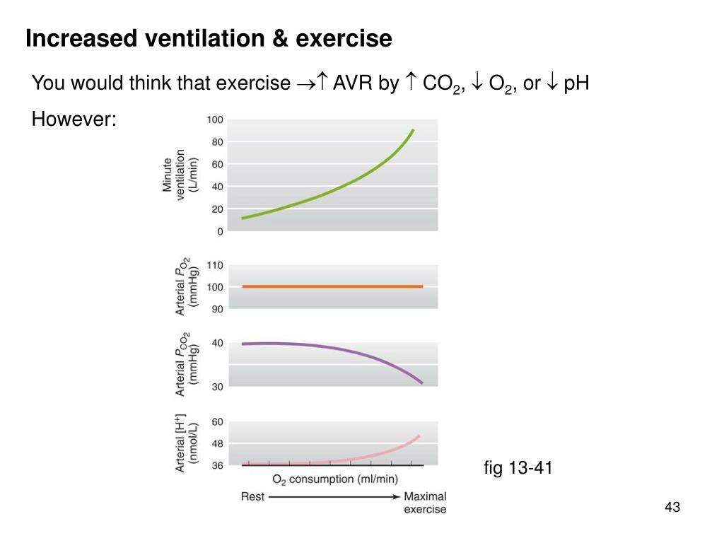 Increased ventilation & exercise