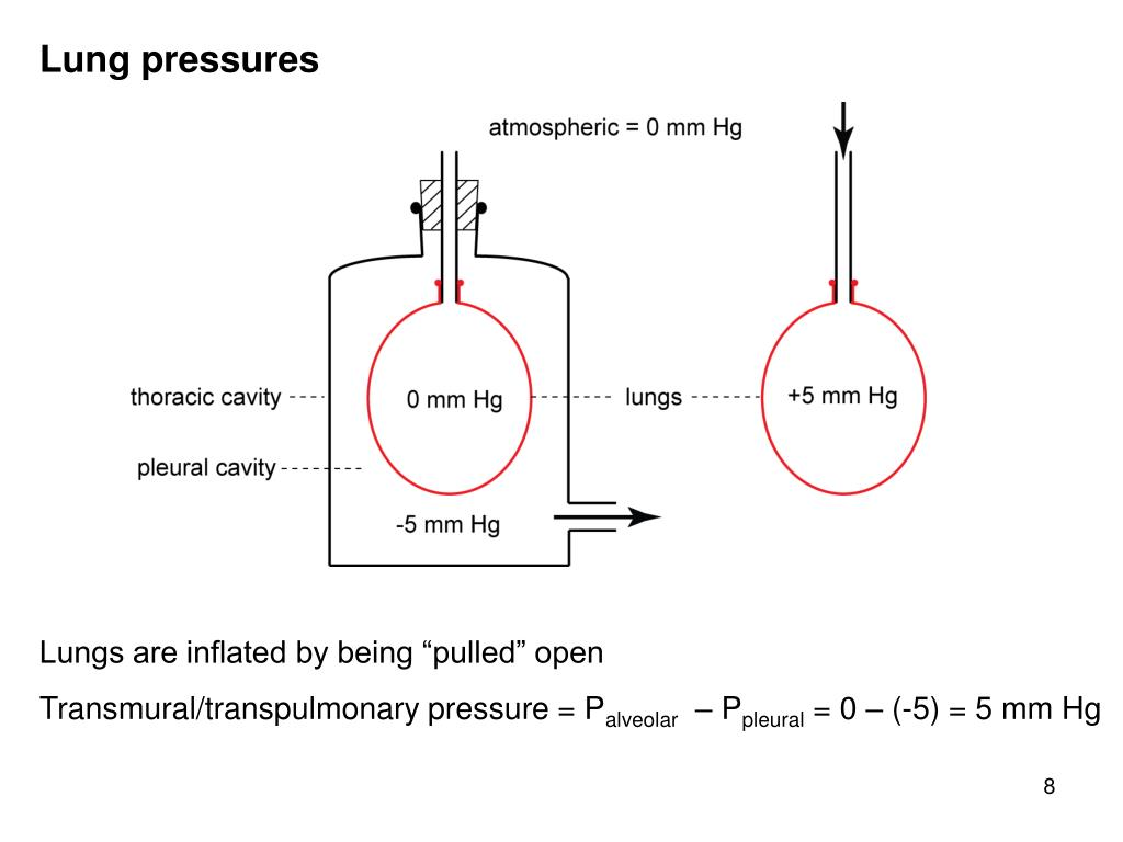 Lung pressures