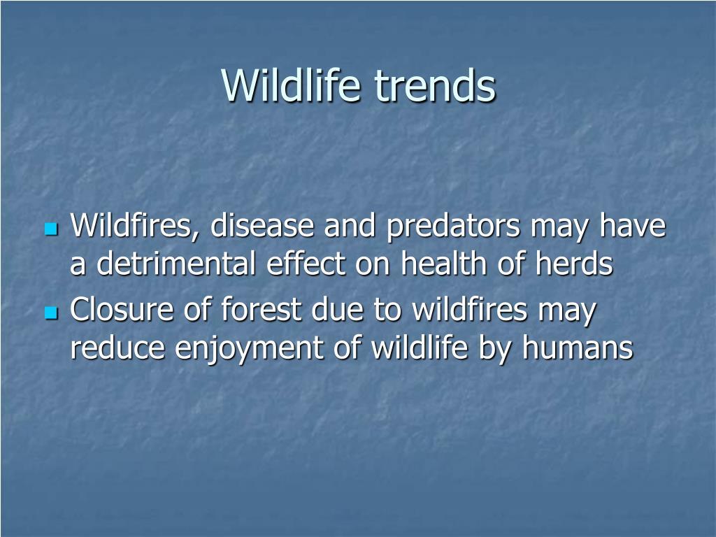 Wildlife trends