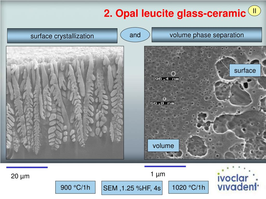 2. Opal leucite glass-ceramic