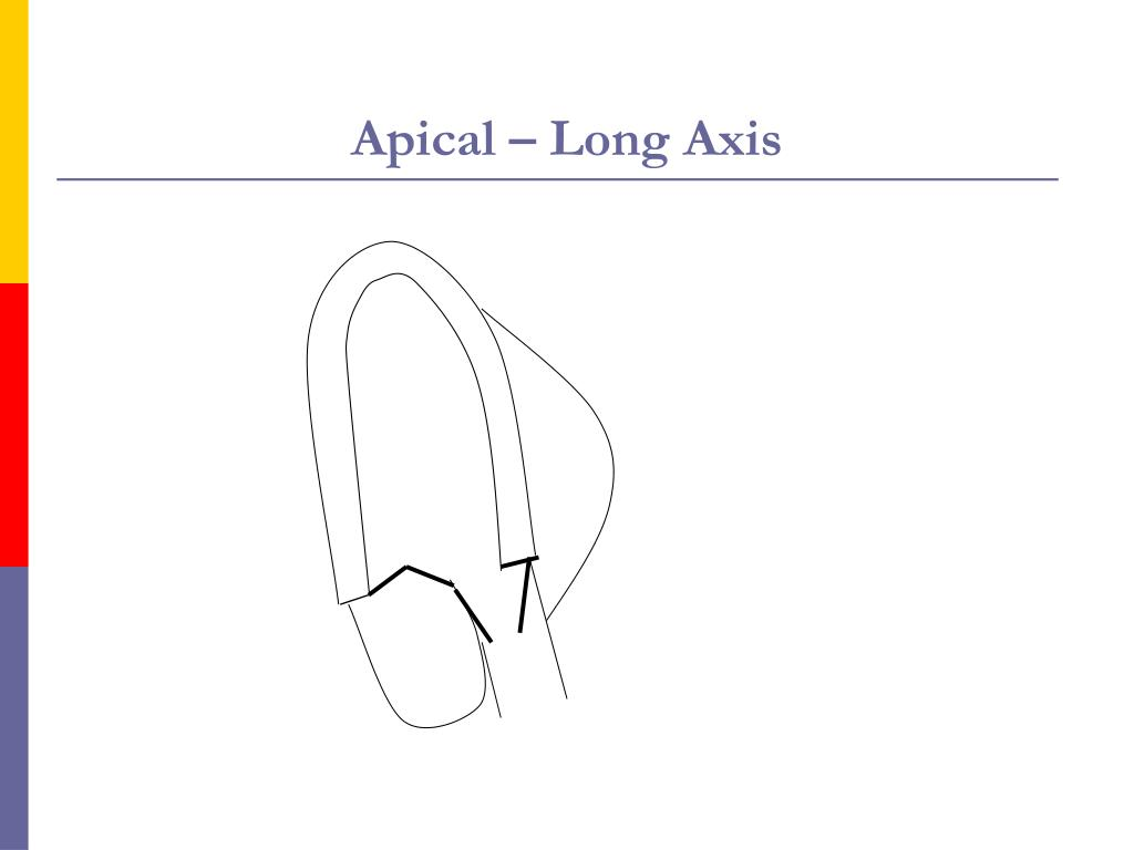 Apical – Long Axis