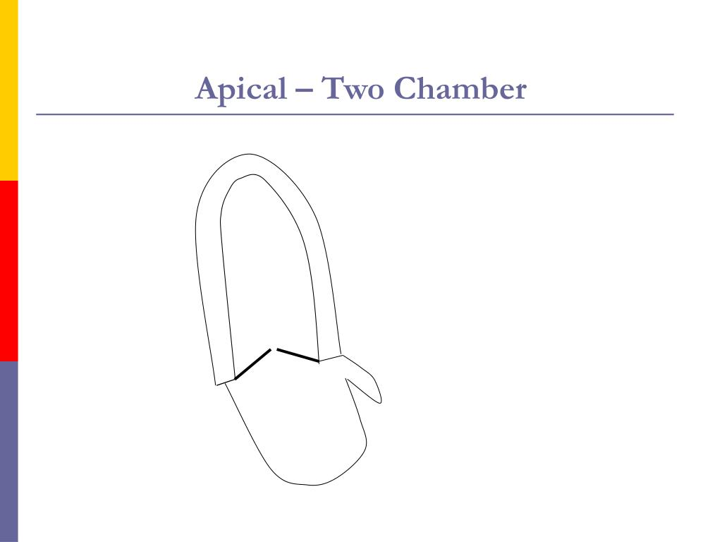 Apical – Two Chamber
