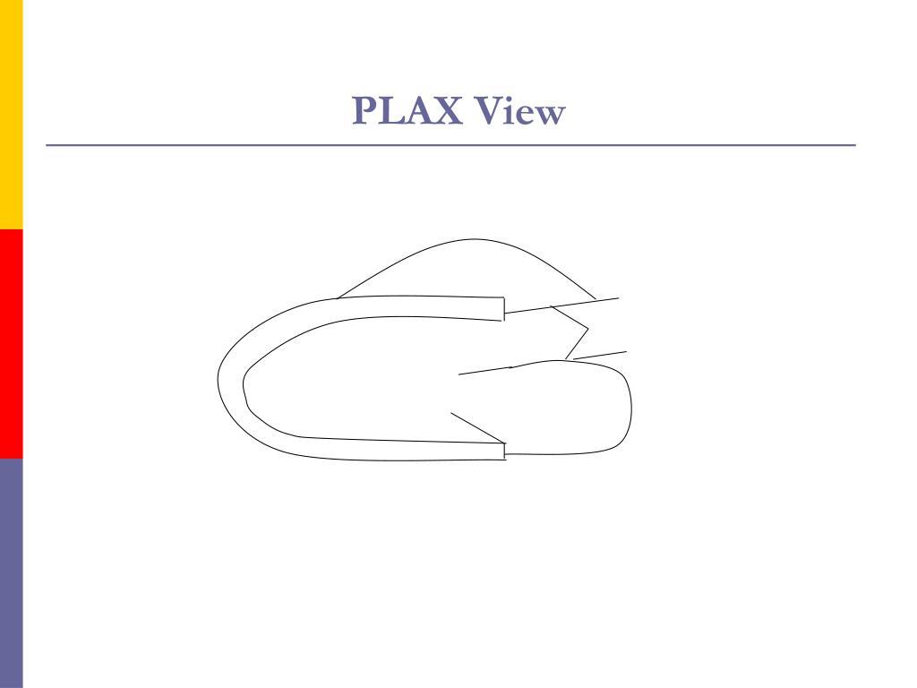 PLAX View