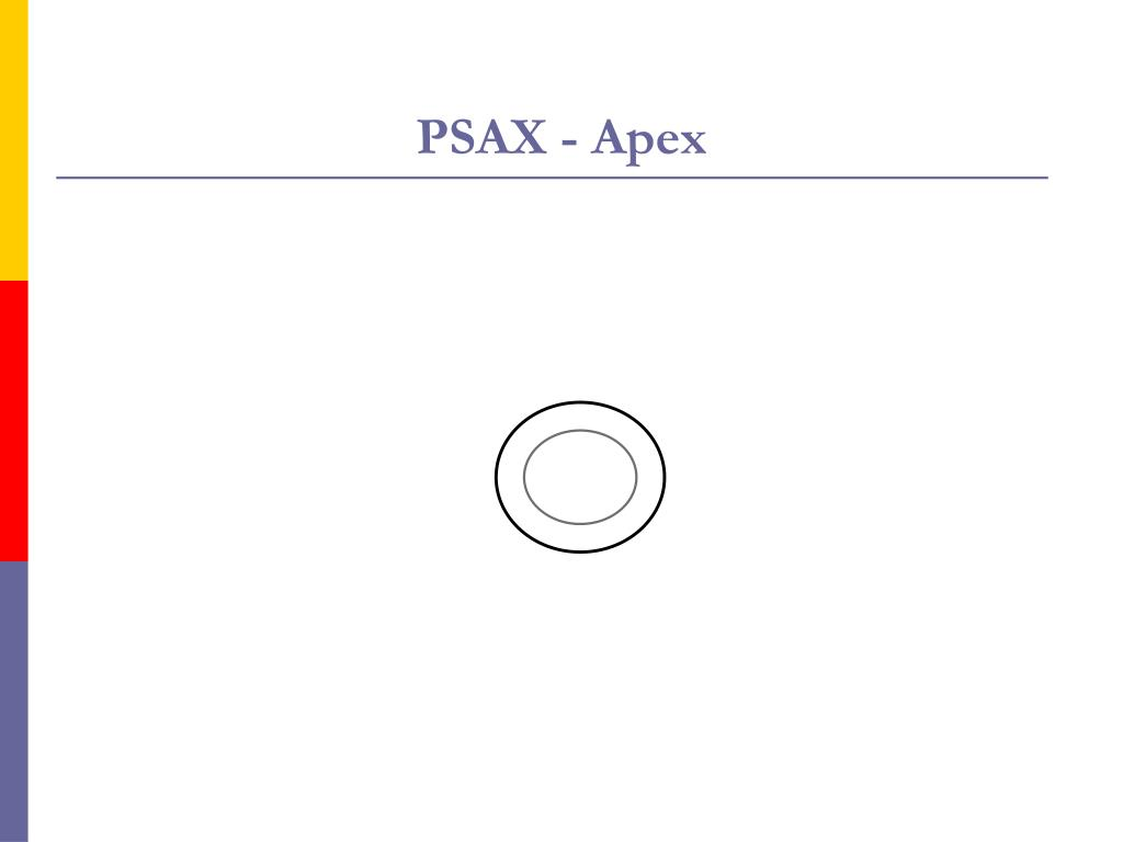 PSAX - Apex