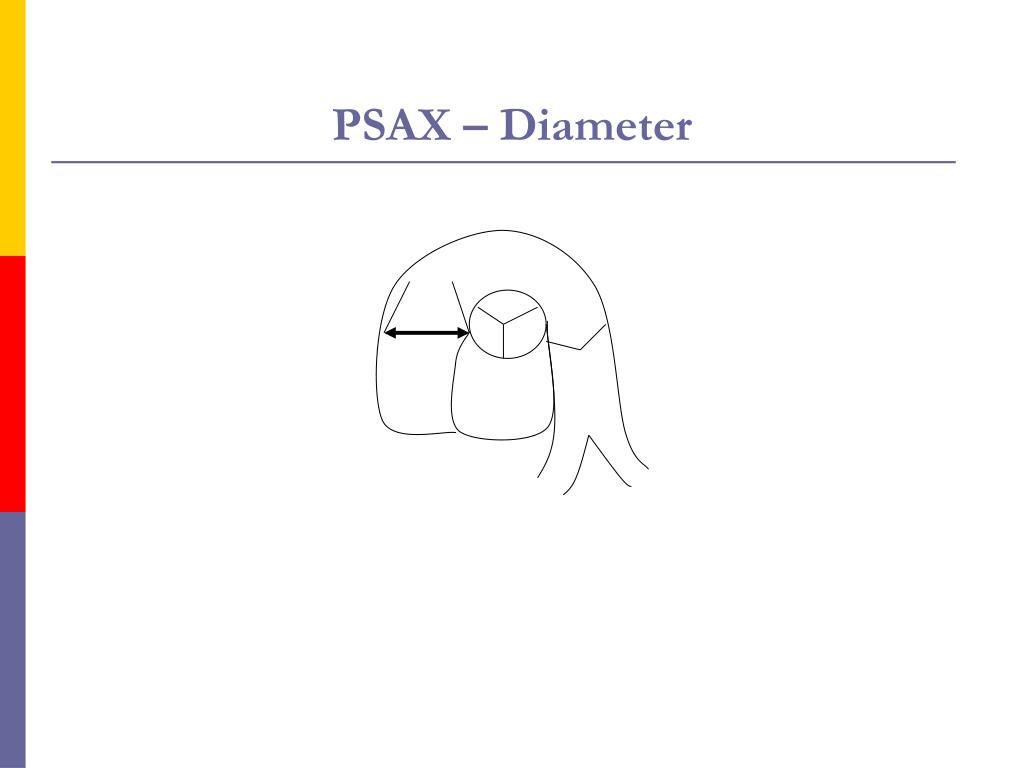 PSAX – Diameter