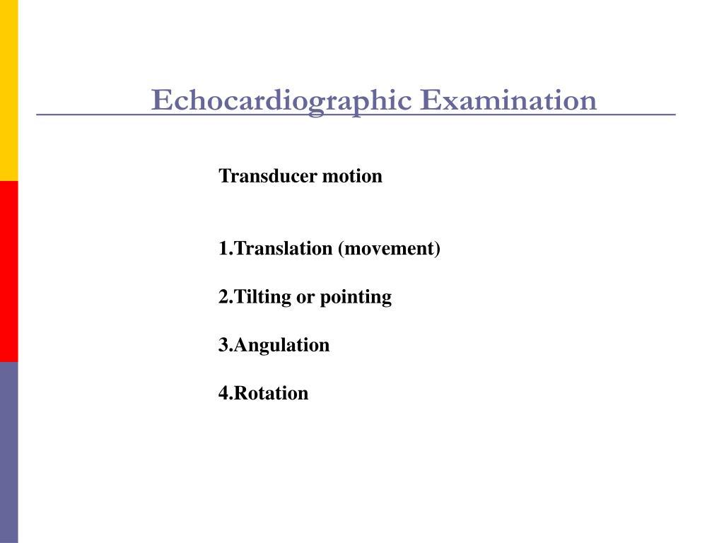 Echocardiographic Examination