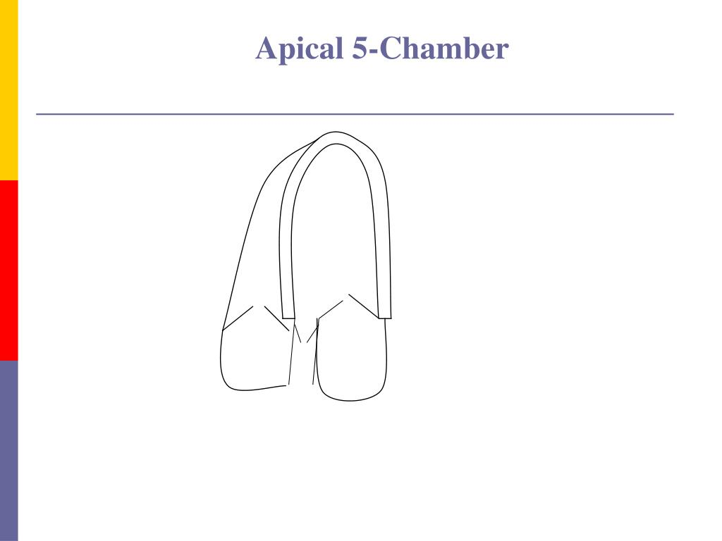Apical 5-Chamber