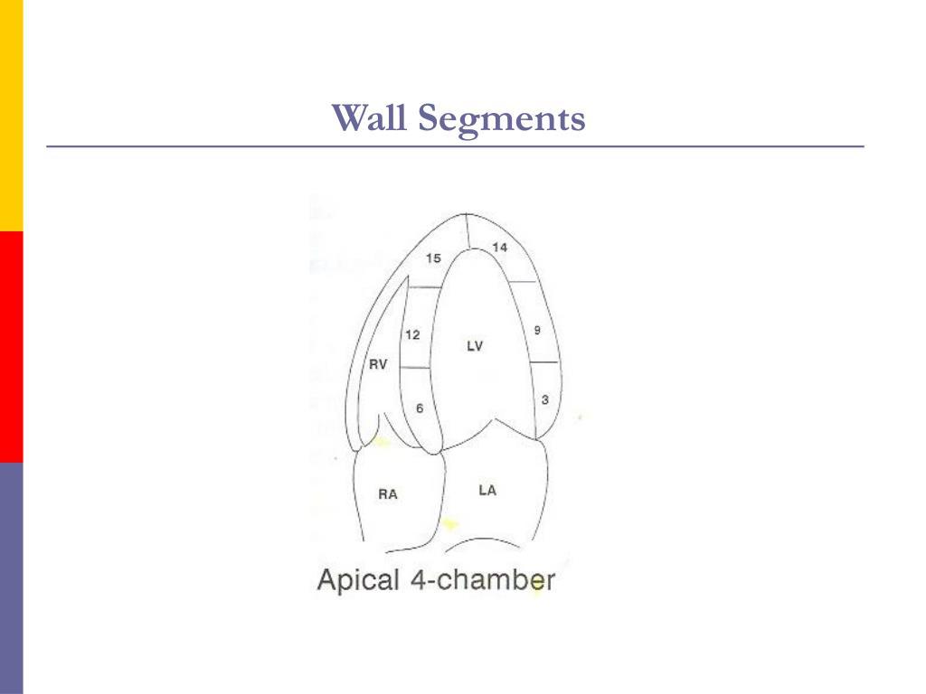 Wall Segments
