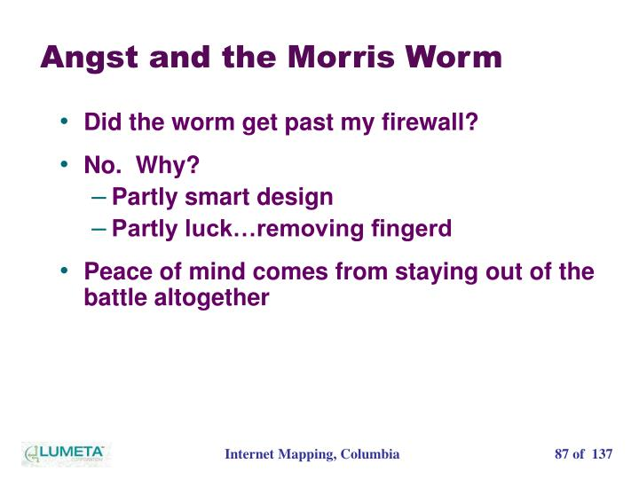 Angst and the Morris Worm