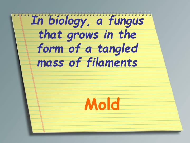 In biology a fungus that grows in the form of a tangled mass of filaments