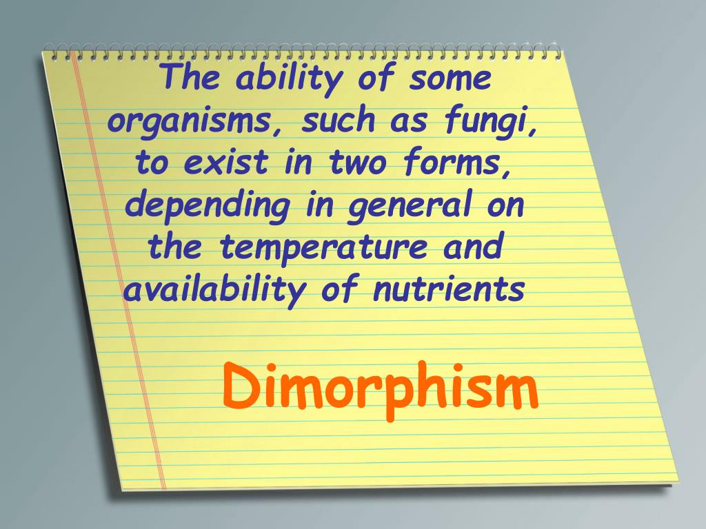 The ability of some organisms, such as fungi, to exist in two forms, depending in general on the temperature and availability of nutrients