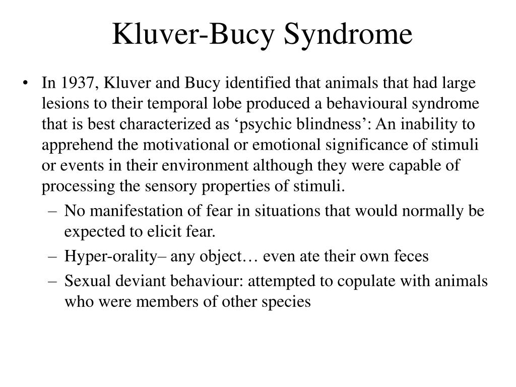 Kluver-Bucy Syndrome