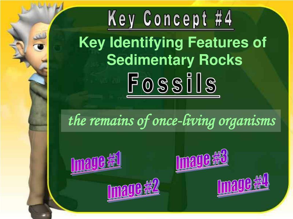 Key Concept #4