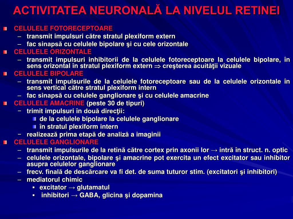 ACTIVITATEA NEURONALĂ LA NIVELUL RETINEI