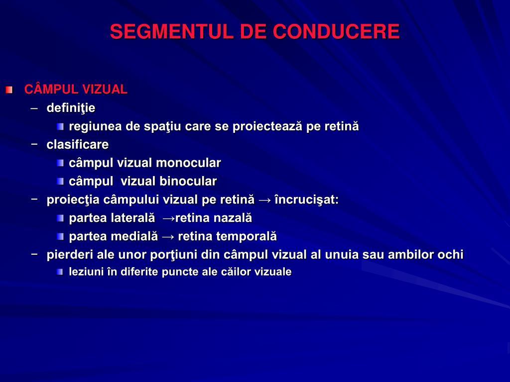 SEGMENTUL DE CONDUCERE