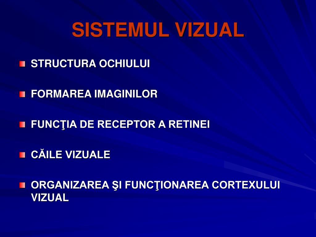 SISTEMUL VI