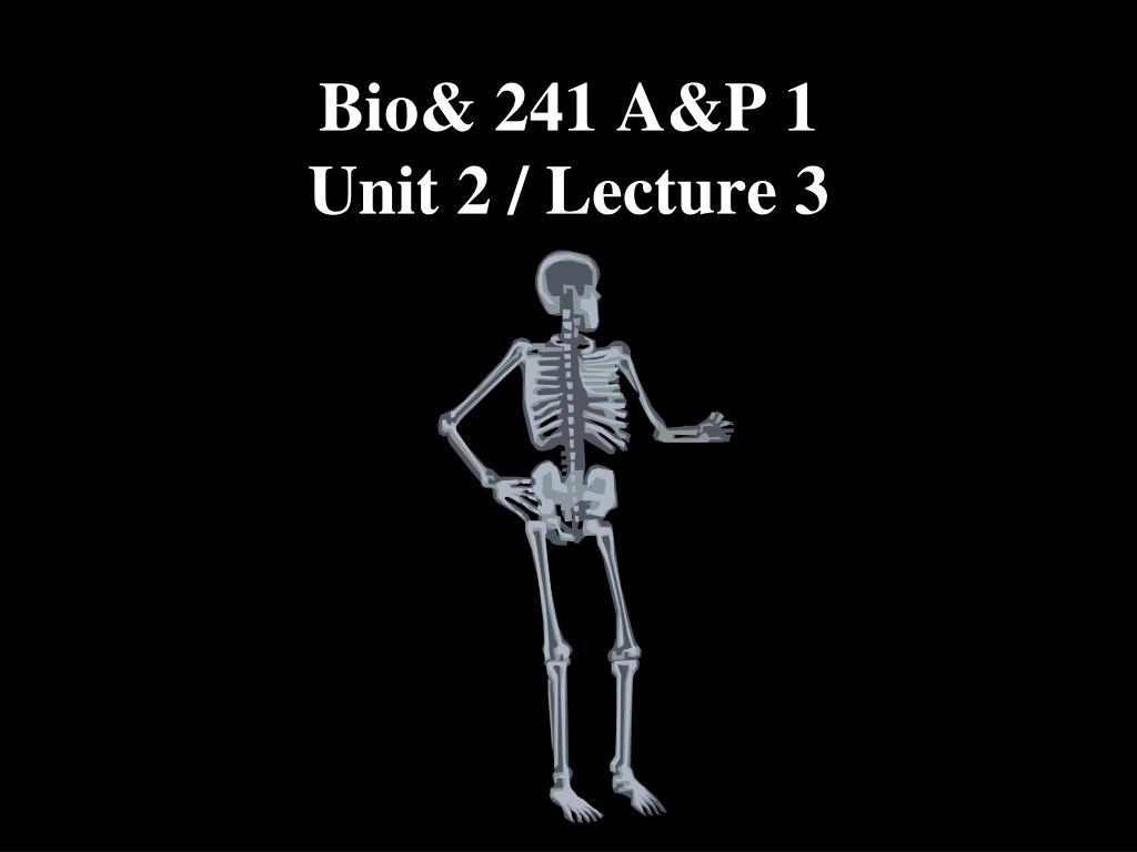 Bio& 241 A&P 1