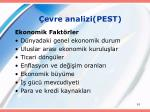 evre analizi pest61