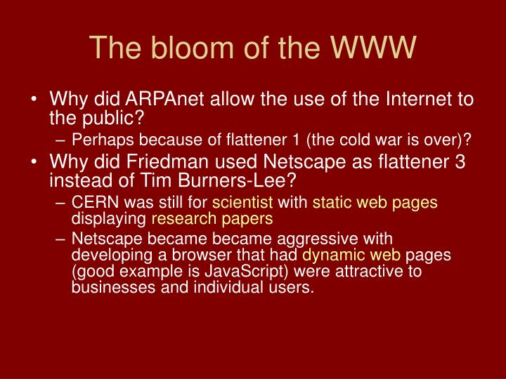 The bloom of the WWW