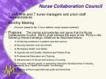nurse collaboration council