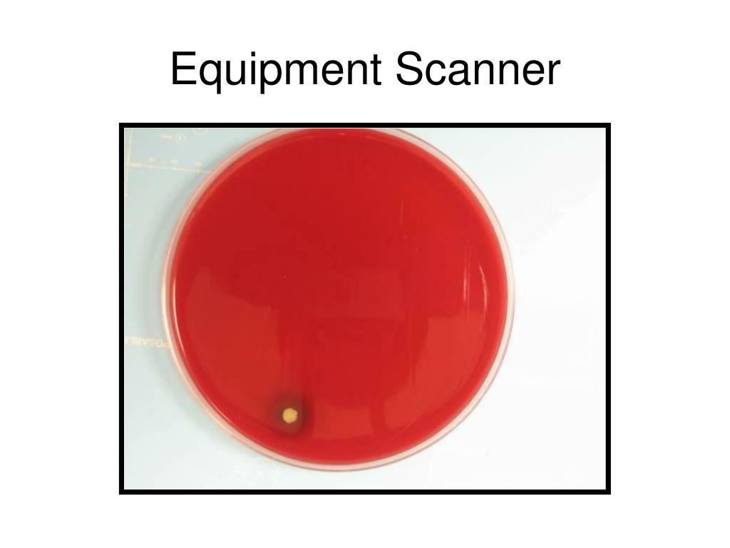 Equipment Scanner