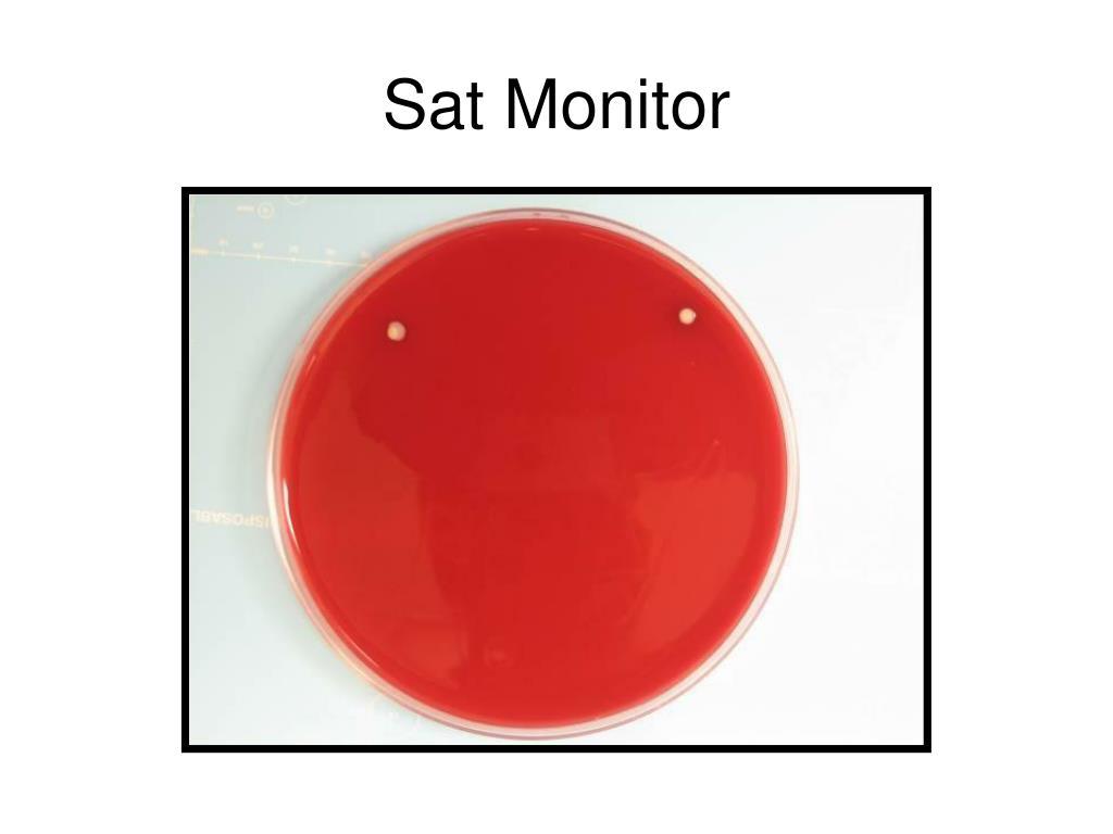 Sat Monitor