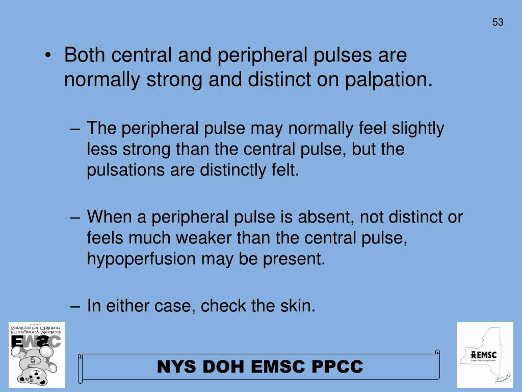Both central and peripheral pulses are normally strong and distinct on palpation.