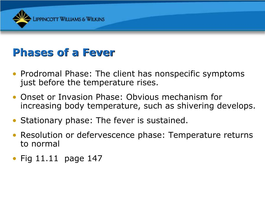 Phases of a Fever