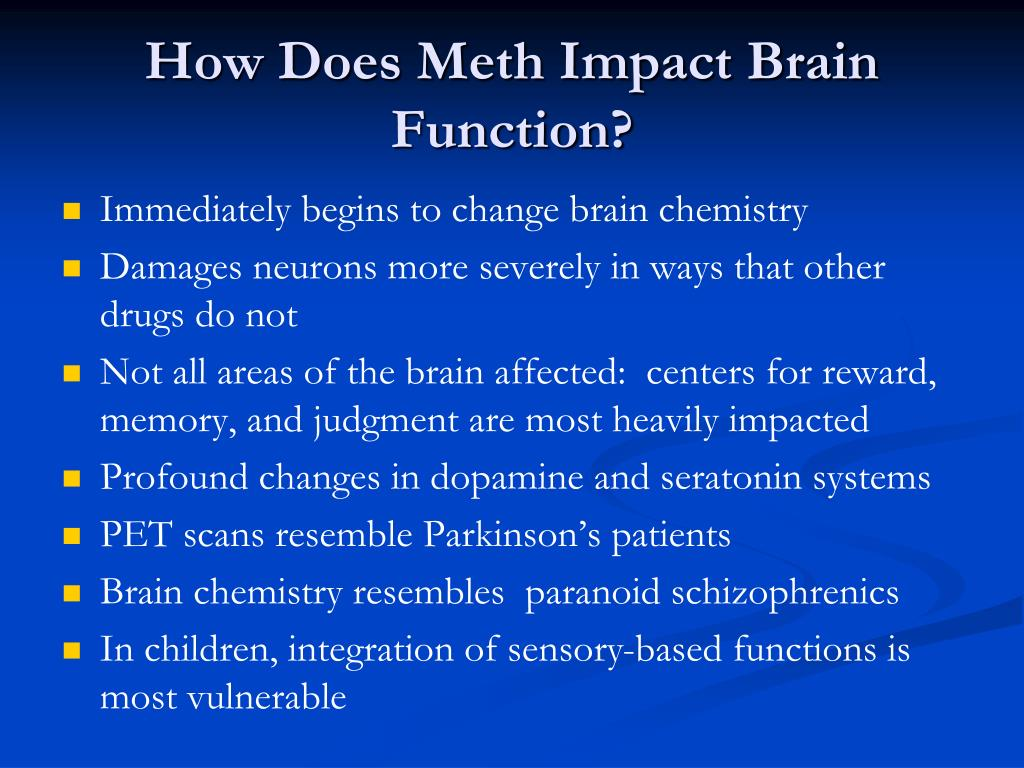 methamphetamine and brain function essay More research is needed to determine just how the brain recovers from methamphetamine addiction and if behavioral treatments can hasten that recovery.