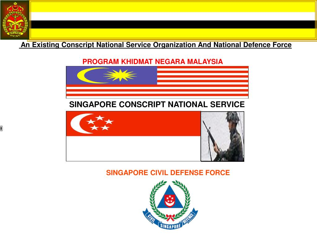 An Existing Conscript National Service Organization And National Defence Force