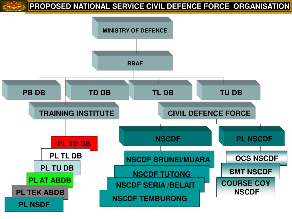 PROPOSED NATIONAL SERVICE CIVIL DEFENCE FORCE  ORGANISATION