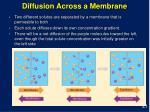 diffusion across a membrane21