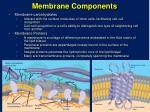 membrane components9