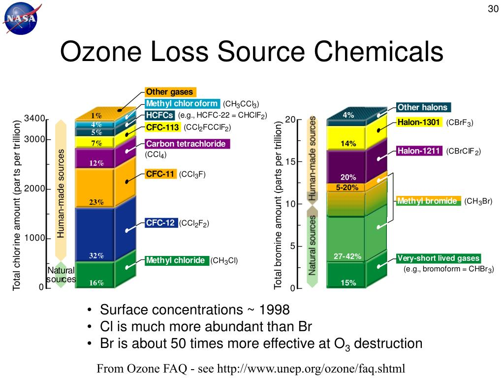 Ozone Loss Source Chemicals