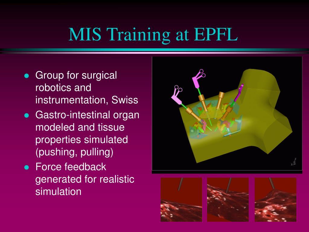 MIS Training at EPFL