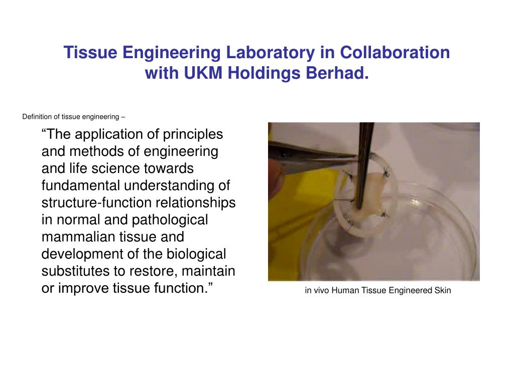 Tissue Engineering Laboratory in Collaboration
