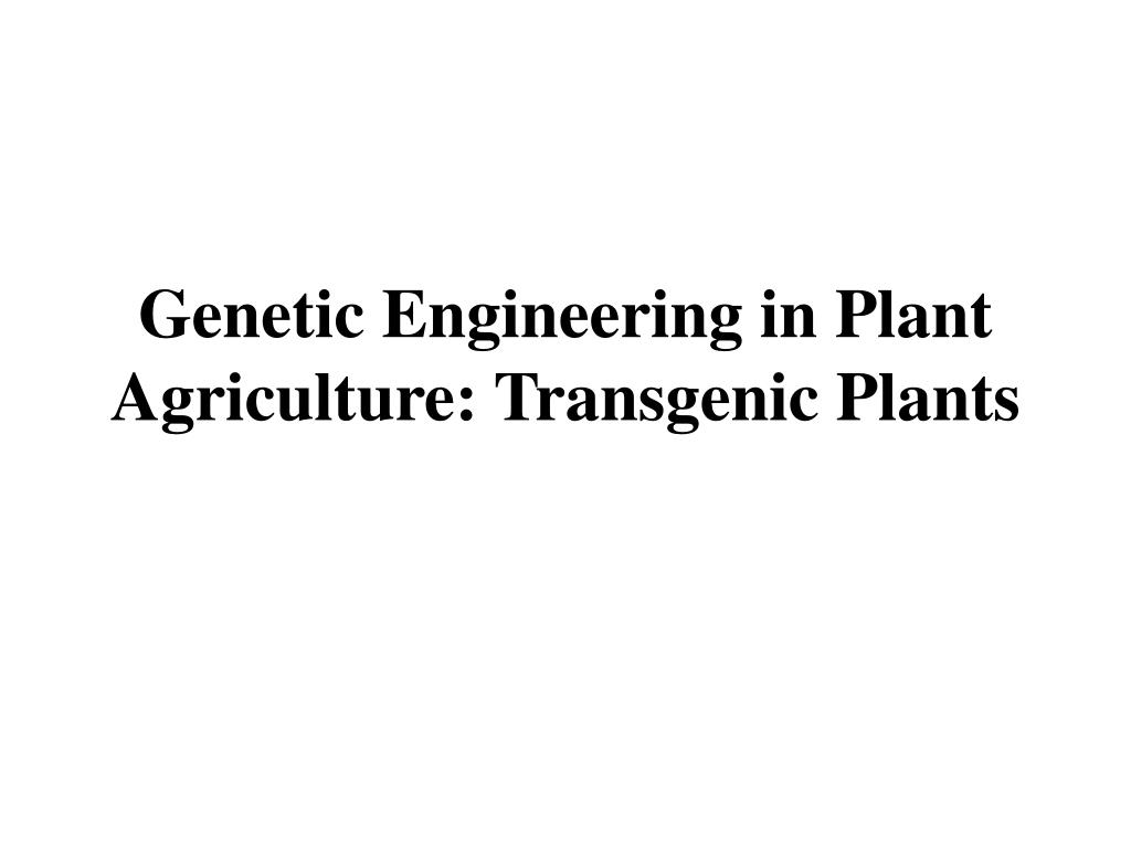 Genetic Engineering in Plant Agriculture: Transgenic Plants