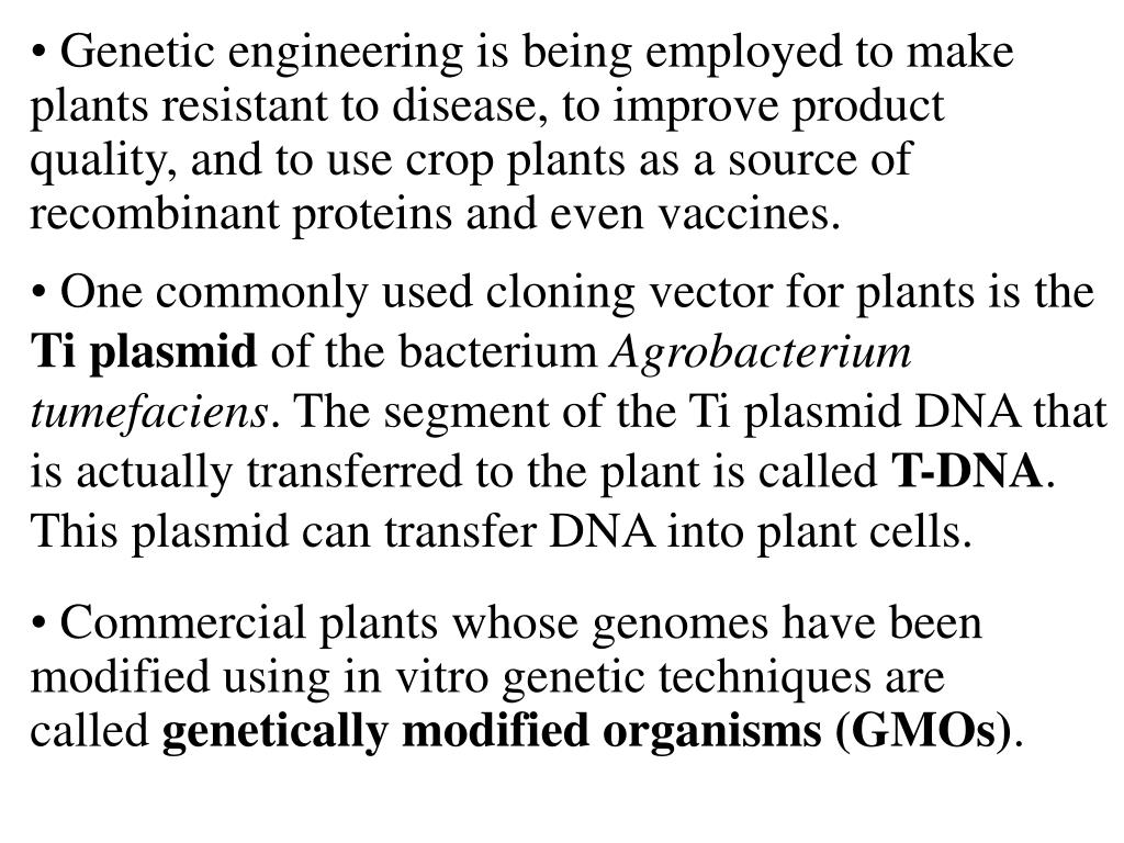 One commonly used cloning vector for plants is the
