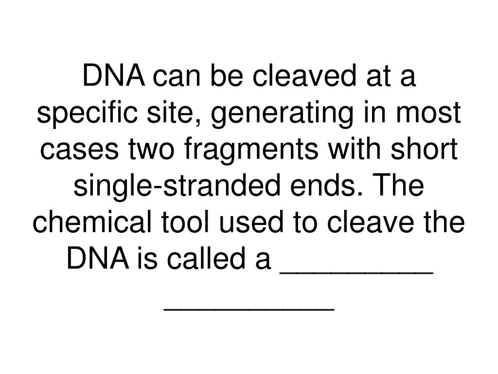 DNA can be cleaved at a specific site, generating in most cases two fragments with short single-stranded ends. The chemical tool used to cleave the DNA is called a _________ __________