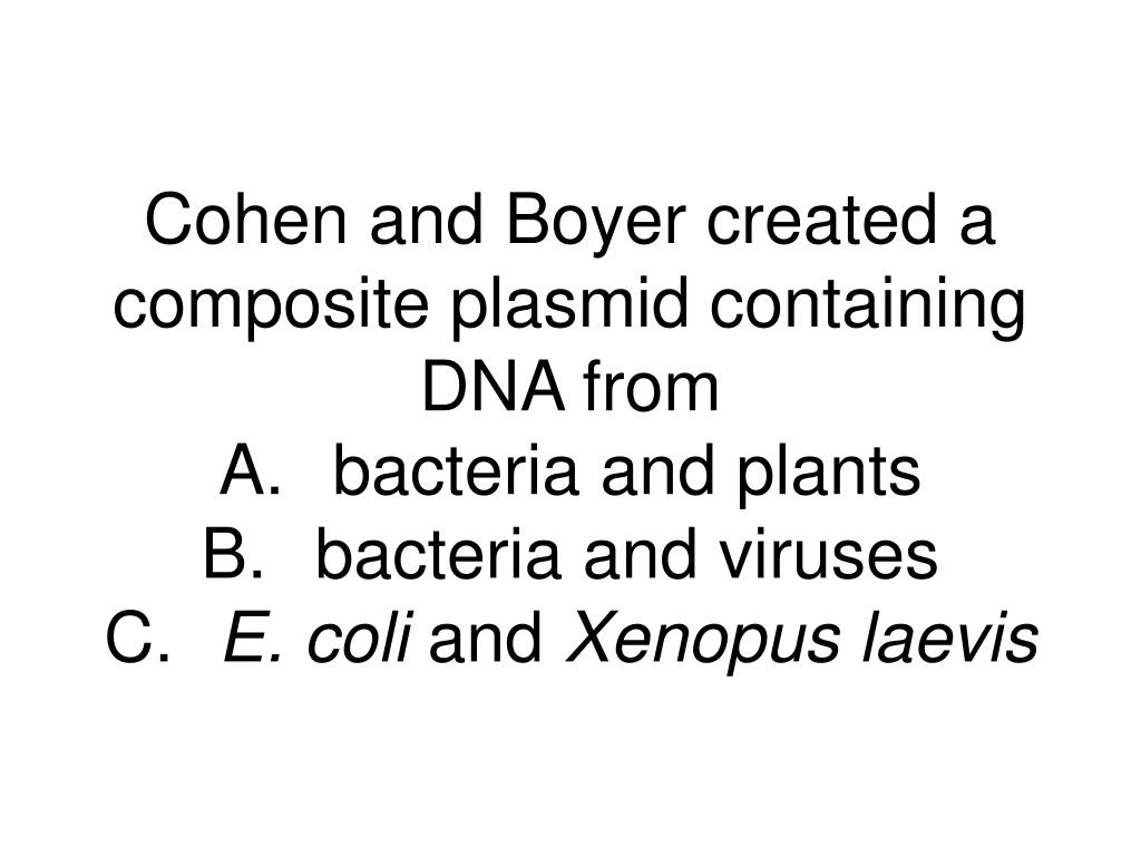 Cohen and Boyer created a composite plasmid containing DNA from