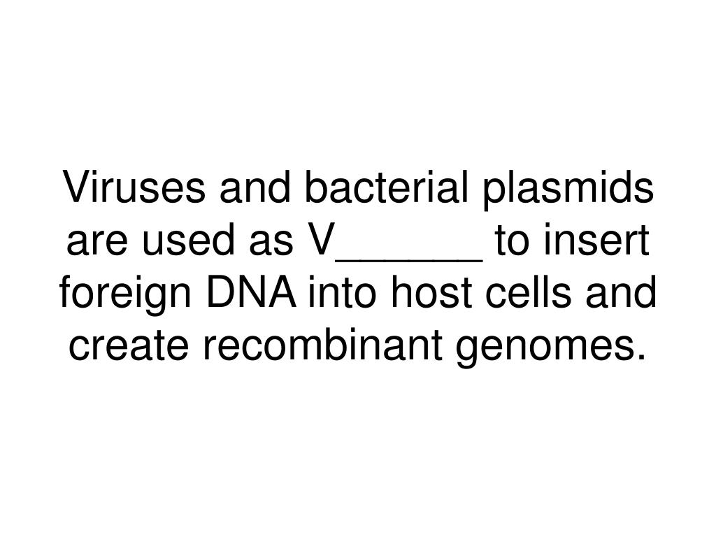 Viruses and bacterial plasmids are used as V______ to insert foreign DNA into host cells and create recombinant genomes.
