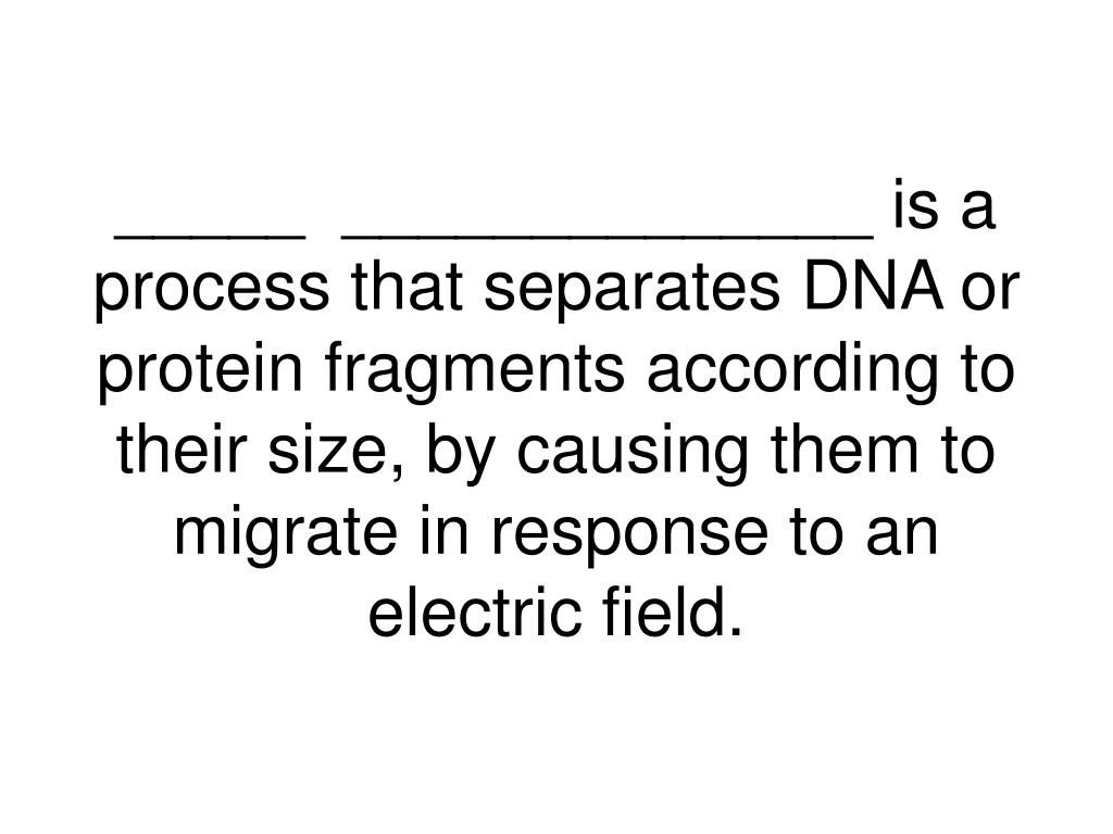 _____  ______________ is a process that separates DNA or protein fragments according to their size, by causing them to migrate in response to an electric field.
