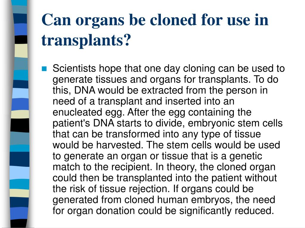 Can organs be cloned for use in transplants?