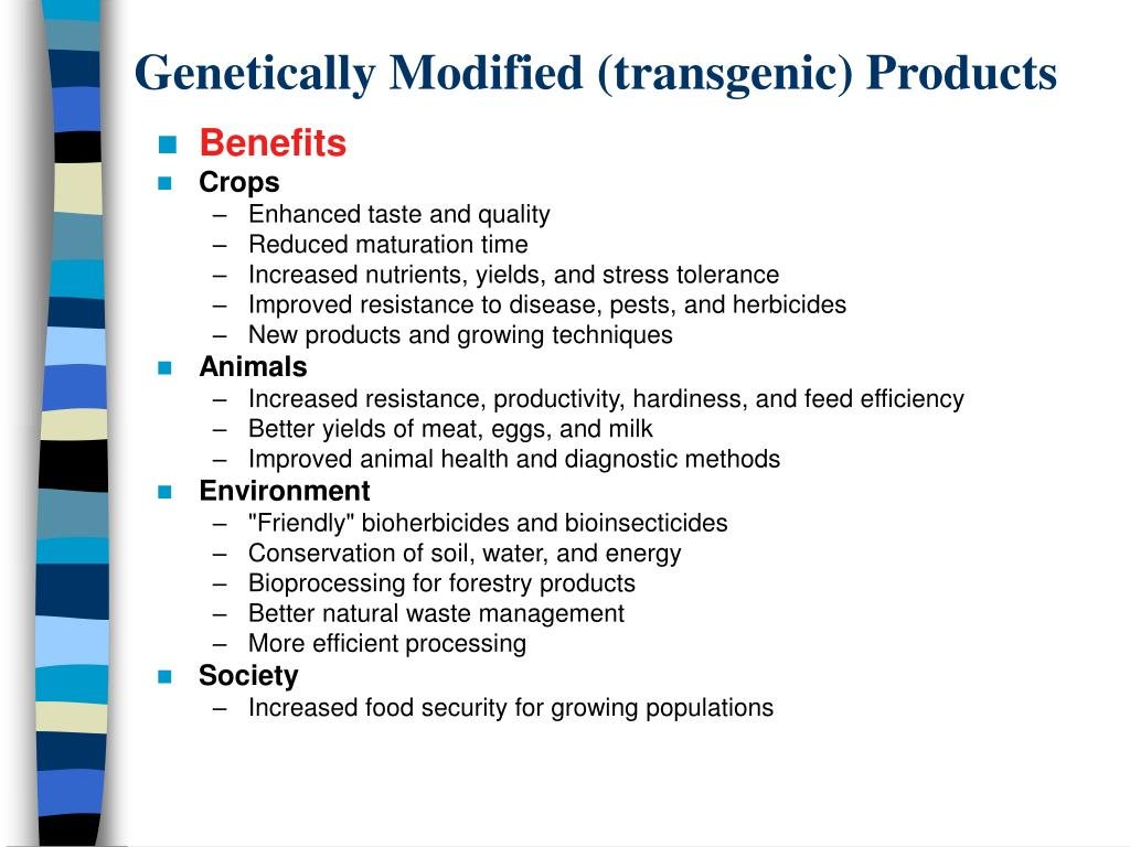 Genetically Modified (transgenic) Products