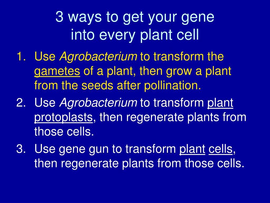 3 ways to get your gene