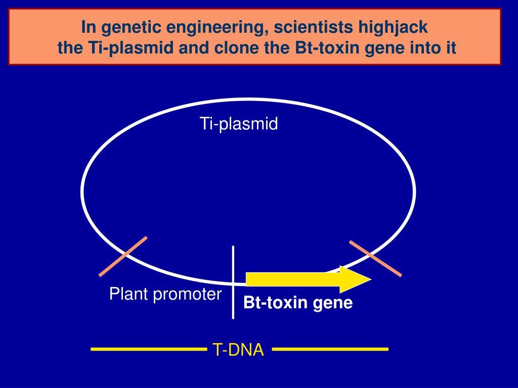 In genetic engineering, scientists highjack