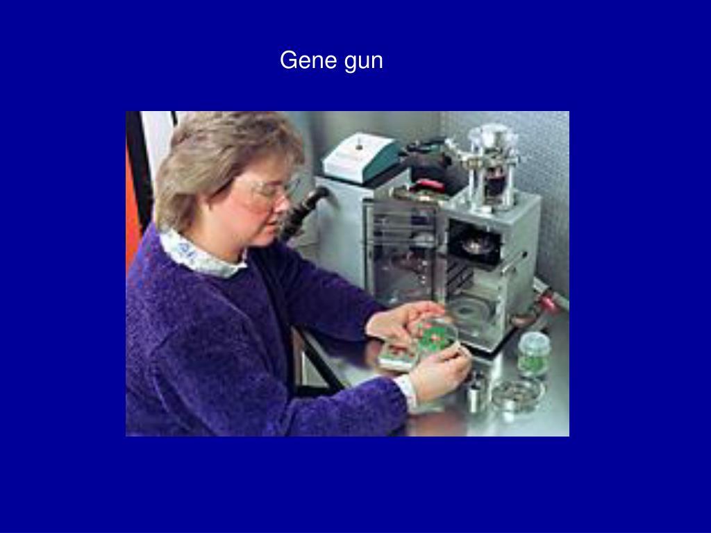Gene gun