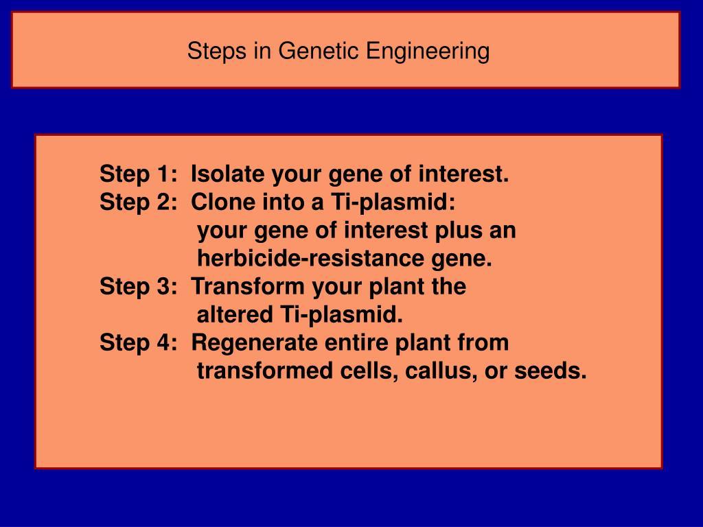 Steps in Genetic Engineering