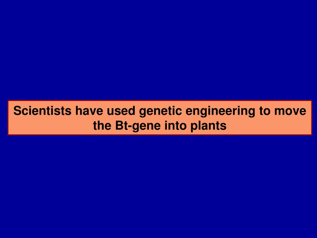 Scientists have used genetic engineering to move